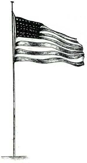 American Flag - Illustration by Rosella Brewster